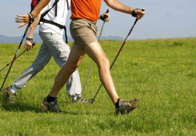 Comment choisir ses bâtons de marche nordique et trail ?
